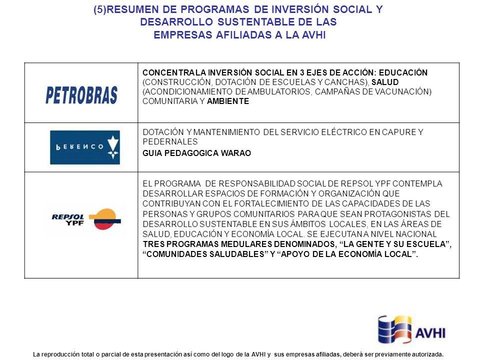 (5)RESUMEN DE PROGRAMAS DE INVERSIÓN SOCIAL Y