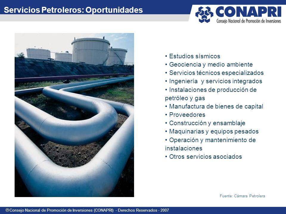 Servicios Petroleros: Oportunidades