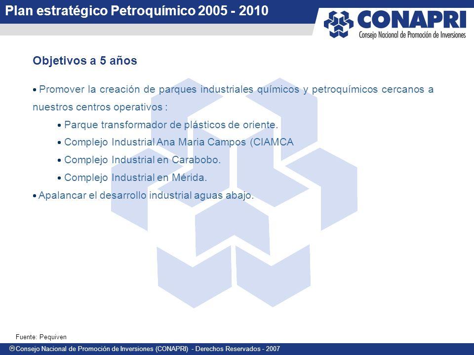 Plan estratégico Petroquímico 2005 - 2010