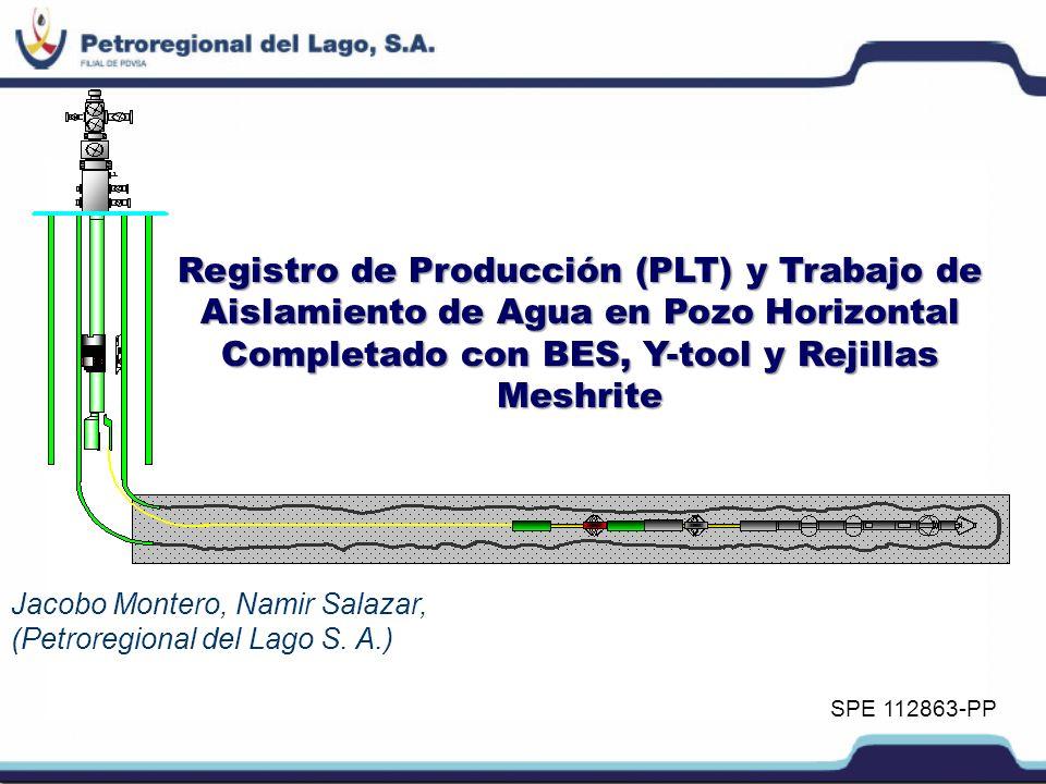 Registro de Producción (PLT) y Trabajo de Aislamiento de Agua en Pozo Horizontal Completado con BES, Y-tool y Rejillas Meshrite