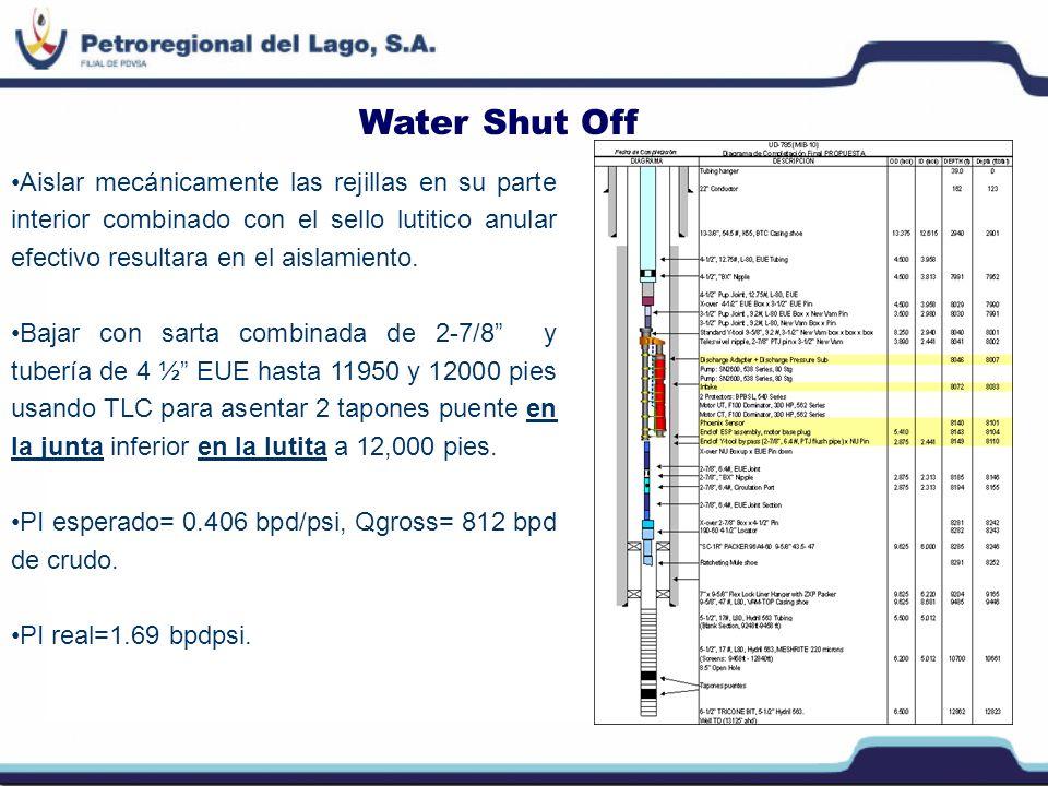 Water Shut Off Aislar mecánicamente las rejillas en su parte interior combinado con el sello lutitico anular efectivo resultara en el aislamiento.