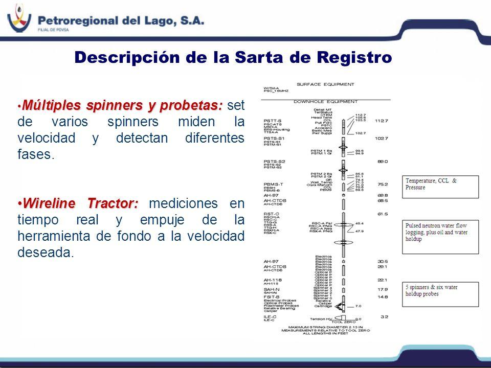 Descripción de la Sarta de Registro