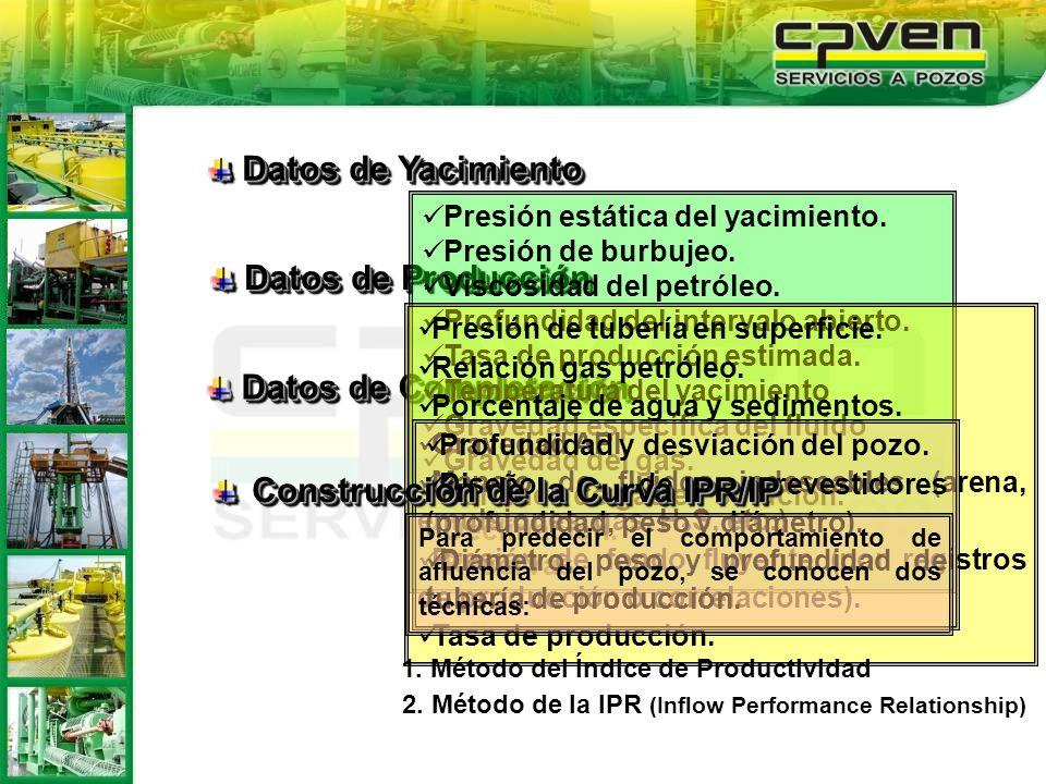 Construcción de la Curva IPR/IP