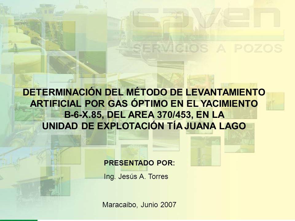 DETERMINACIÓN DEL MÉTODO DE LEVANTAMIENTO ARTIFICIAL POR GAS ÓPTIMO EN EL YACIMIENTO B-6-X.85, DEL AREA 370/453, EN LA UNIDAD DE EXPLOTACIÓN TÍA JUANA LAGO