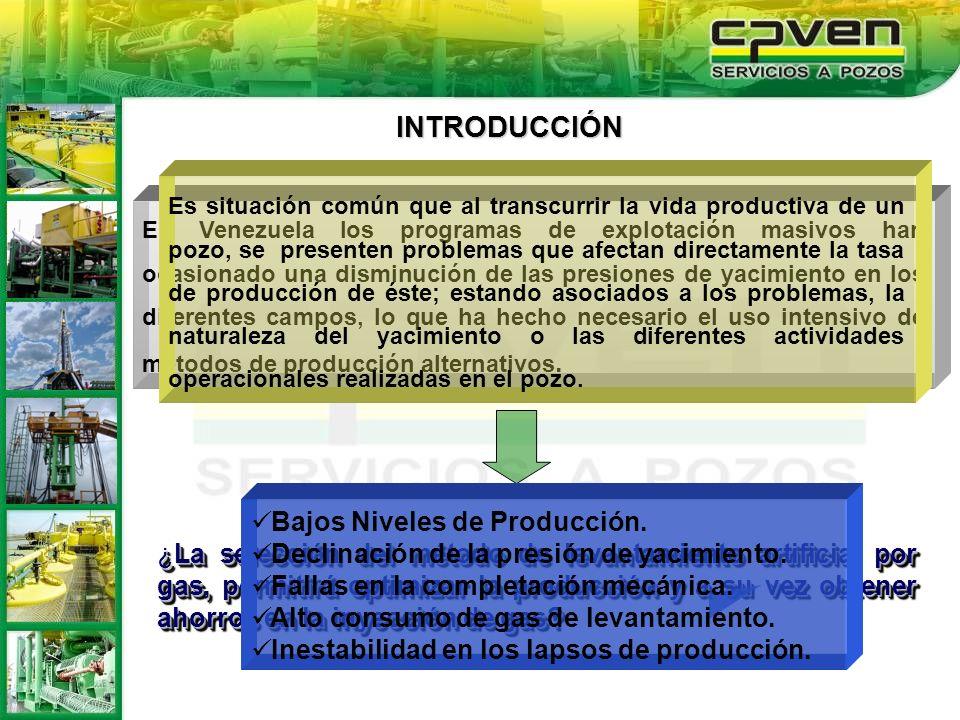 INTRODUCCIÓN Bajos Niveles de Producción.