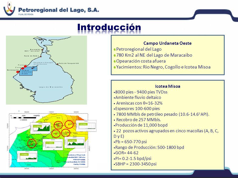Introducción Campo Urdaneta Oeste Petroregional del Lago