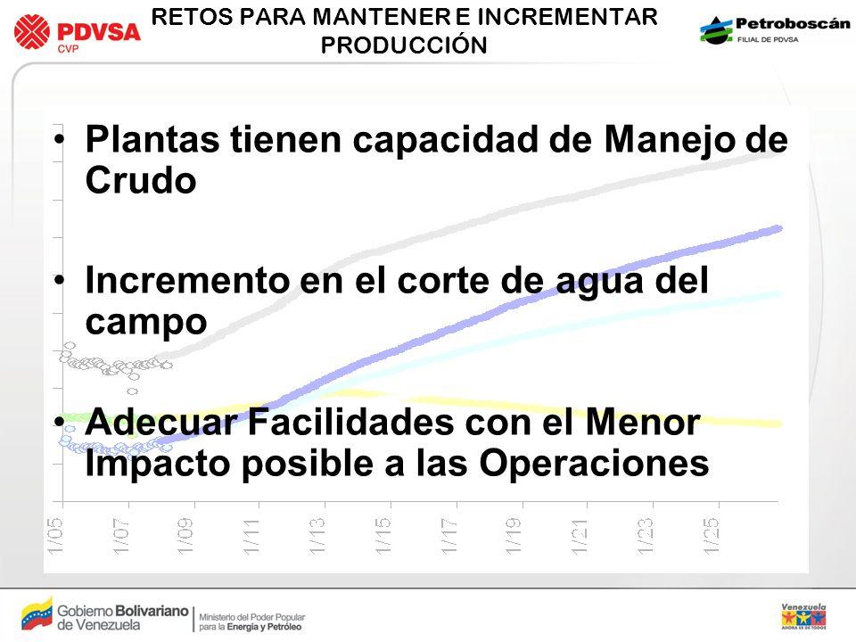 RETOS PARA MANTENER E INCREMENTAR PRODUCCIÓN