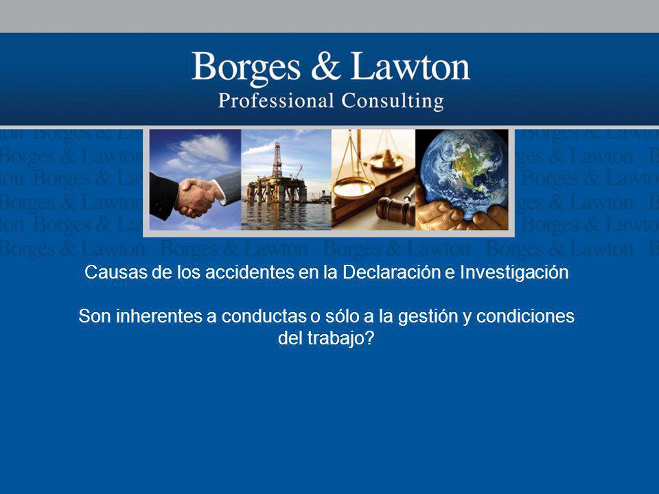 Causas de los accidentes en la Declaración e Investigación