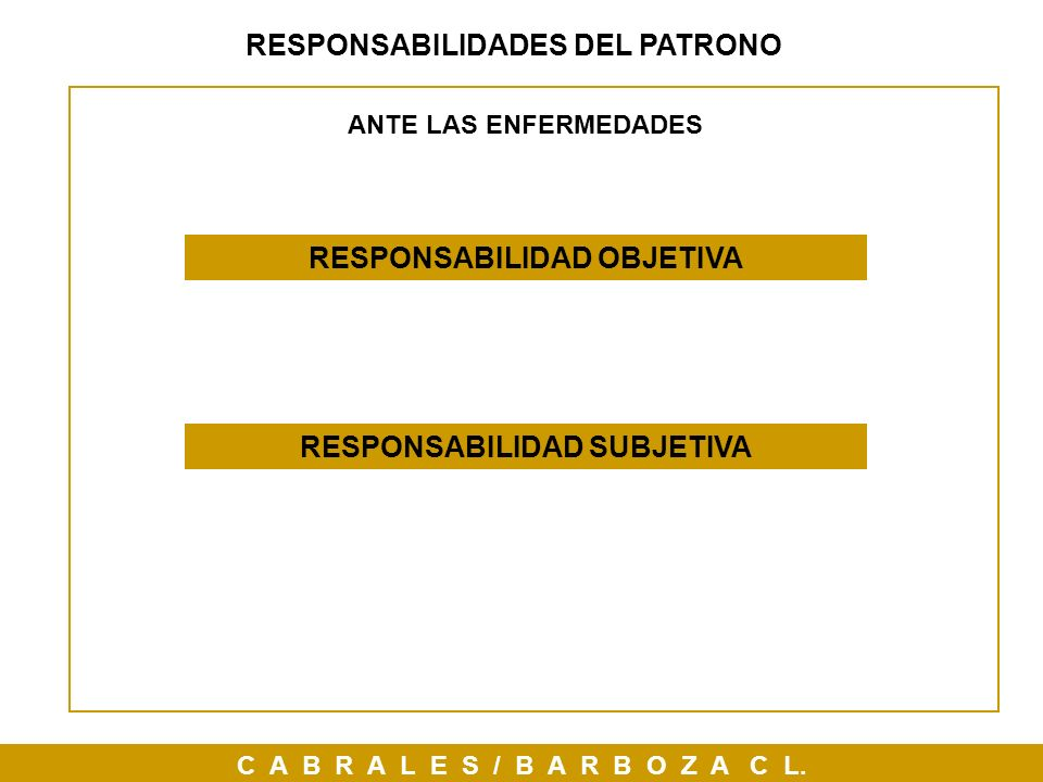 RESPONSABILIDADES DEL PATRONO