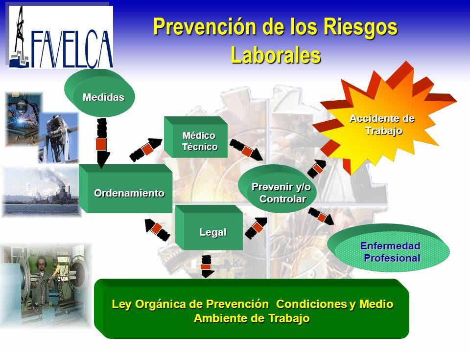 Prevención de los Riesgos Laborales