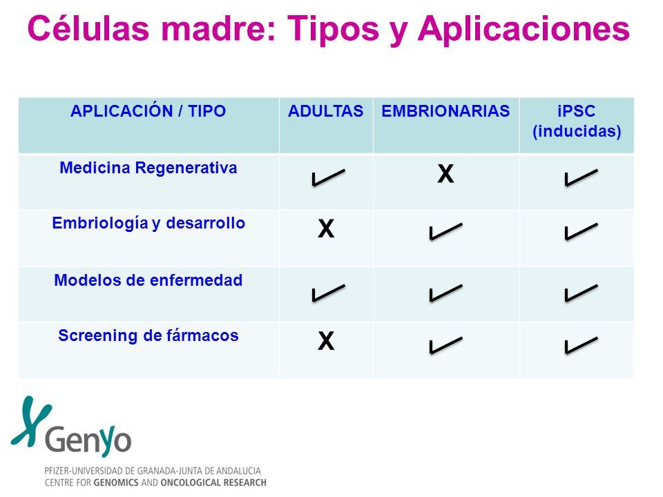 Células madre: Tipos y Aplicaciones