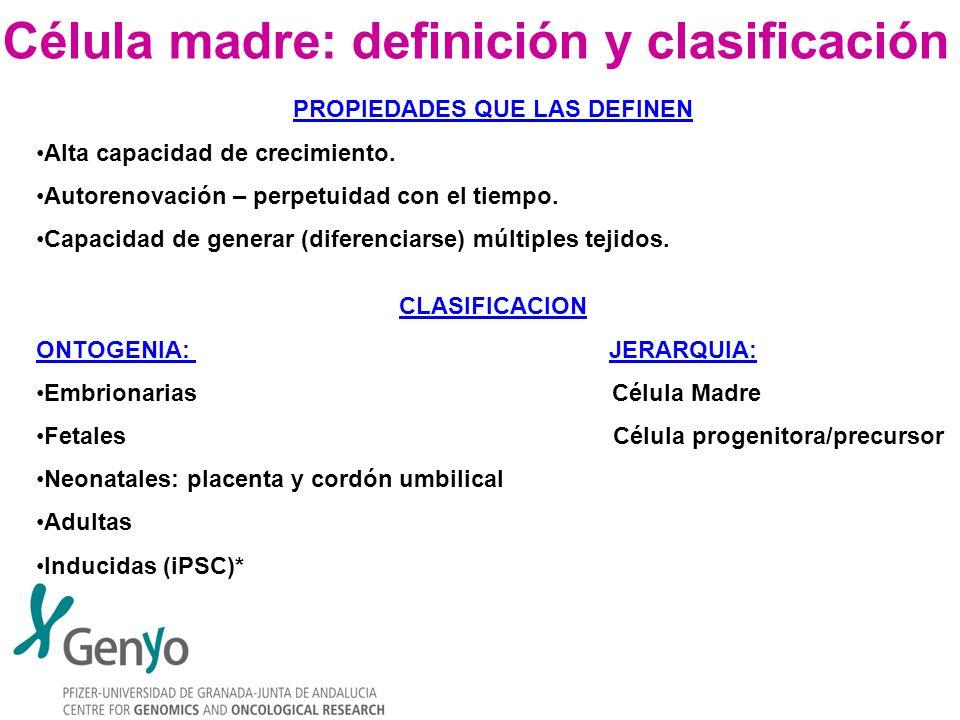 Célula madre: definición y clasificación PROPIEDADES QUE LAS DEFINEN