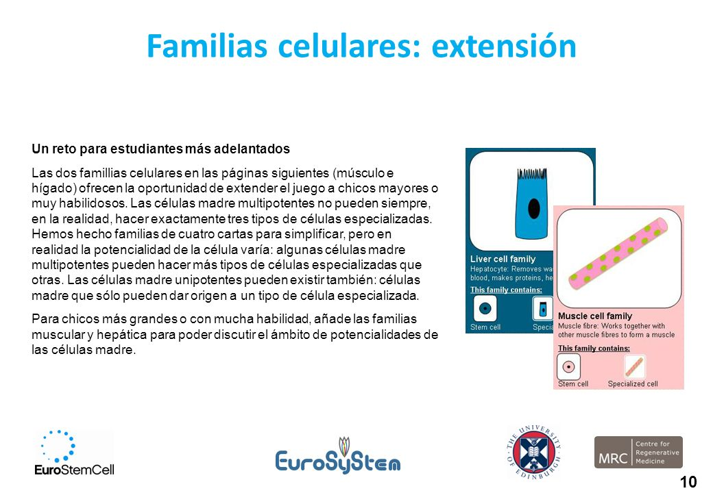 Familias celulares: extensión