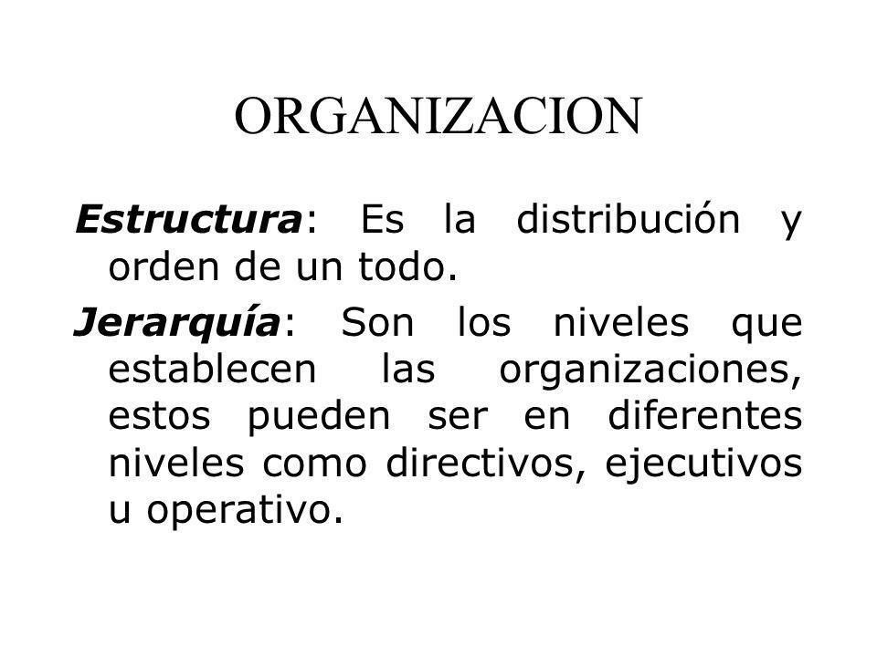 ORGANIZACION Estructura: Es la distribución y orden de un todo.
