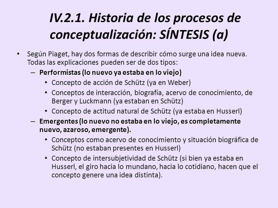 IV.2.1. Historia de los procesos de conceptualización: SÍNTESIS (a)