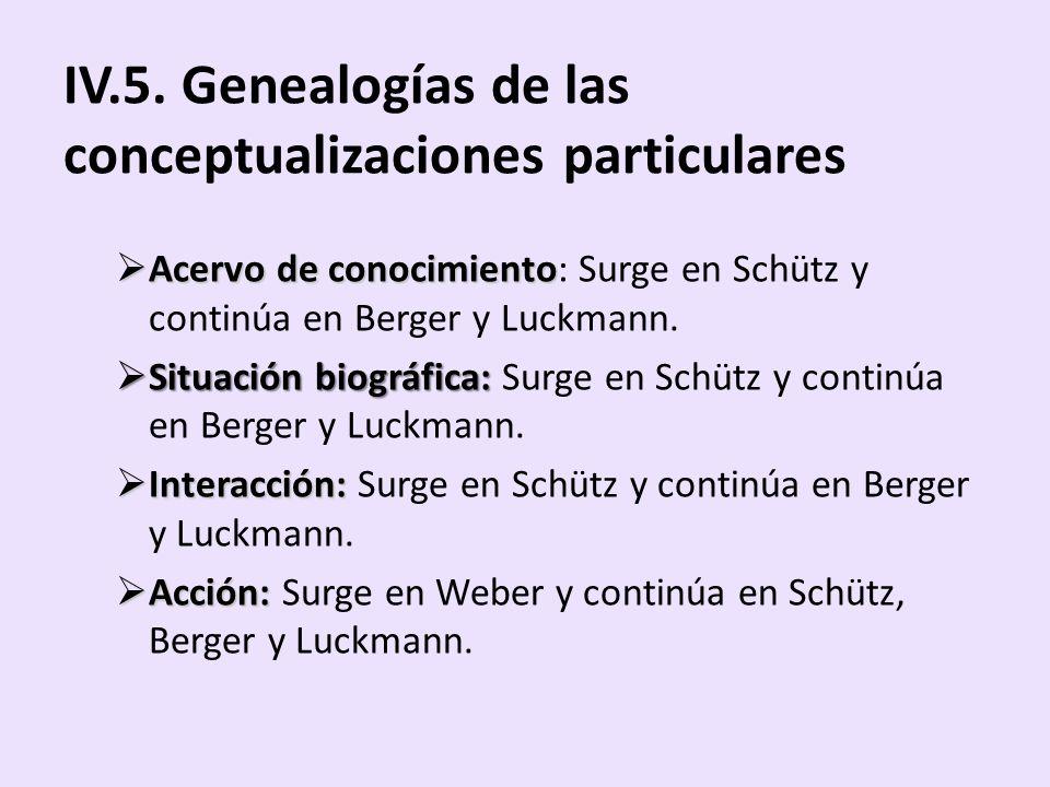 IV.5. Genealogías de las conceptualizaciones particulares