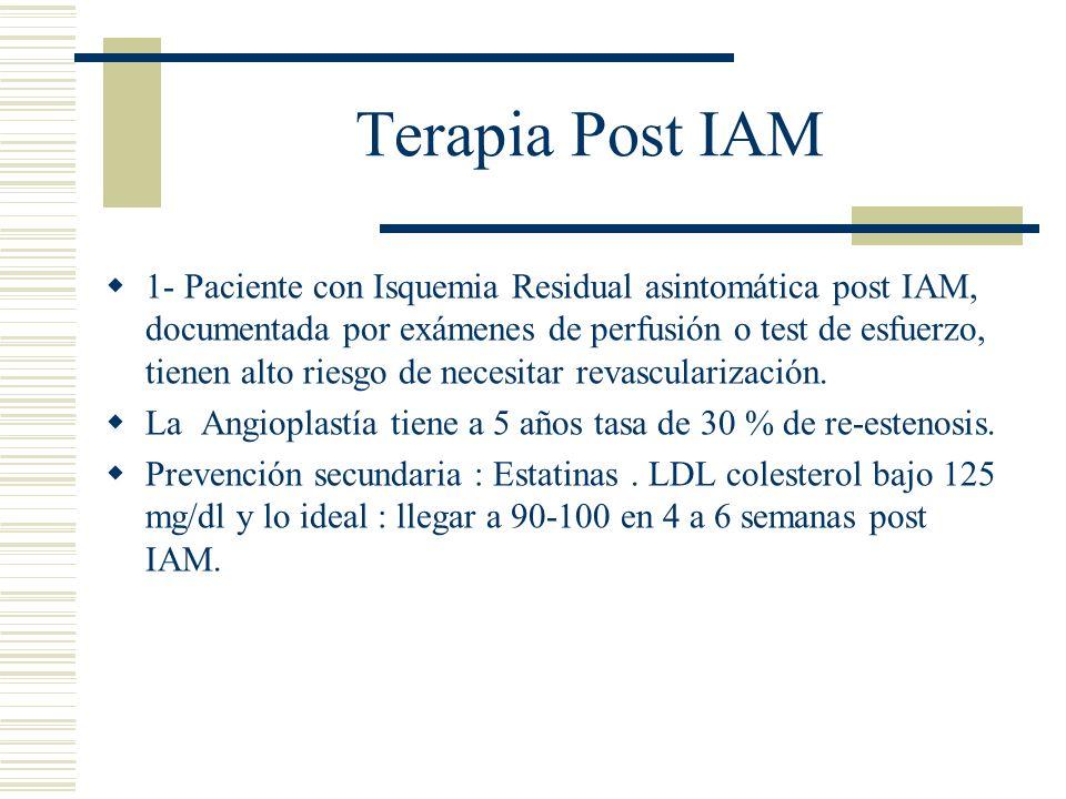 Terapia Post IAM