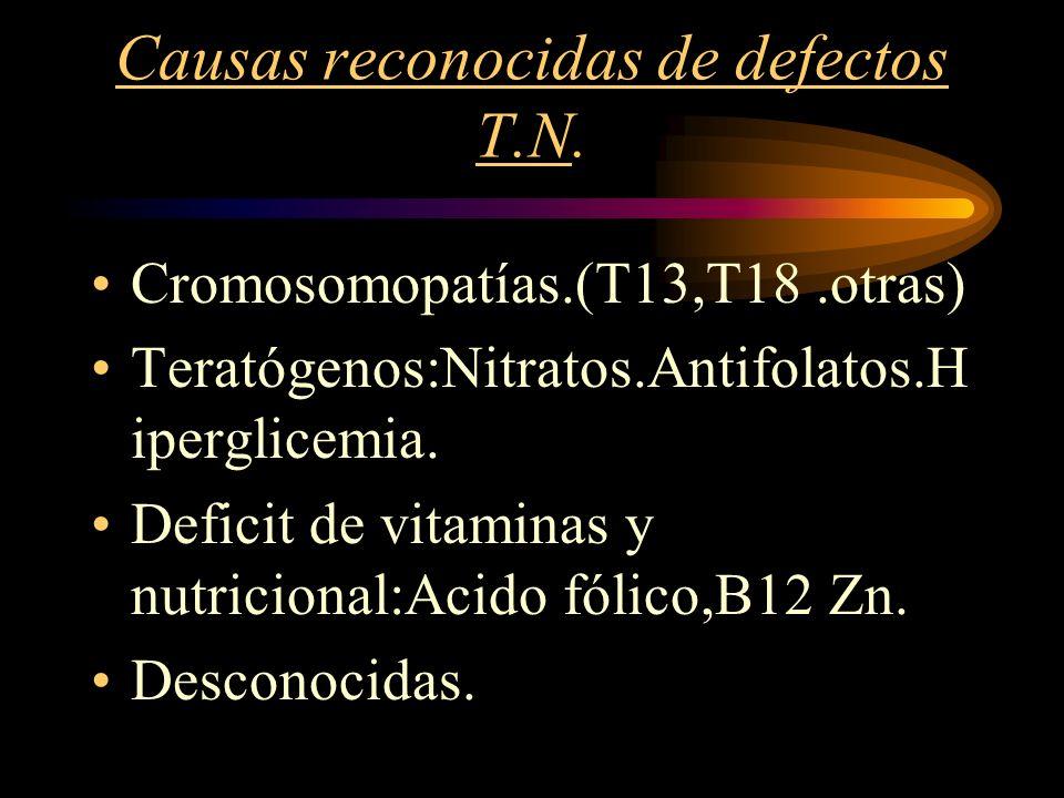 Causas reconocidas de defectos T.N.