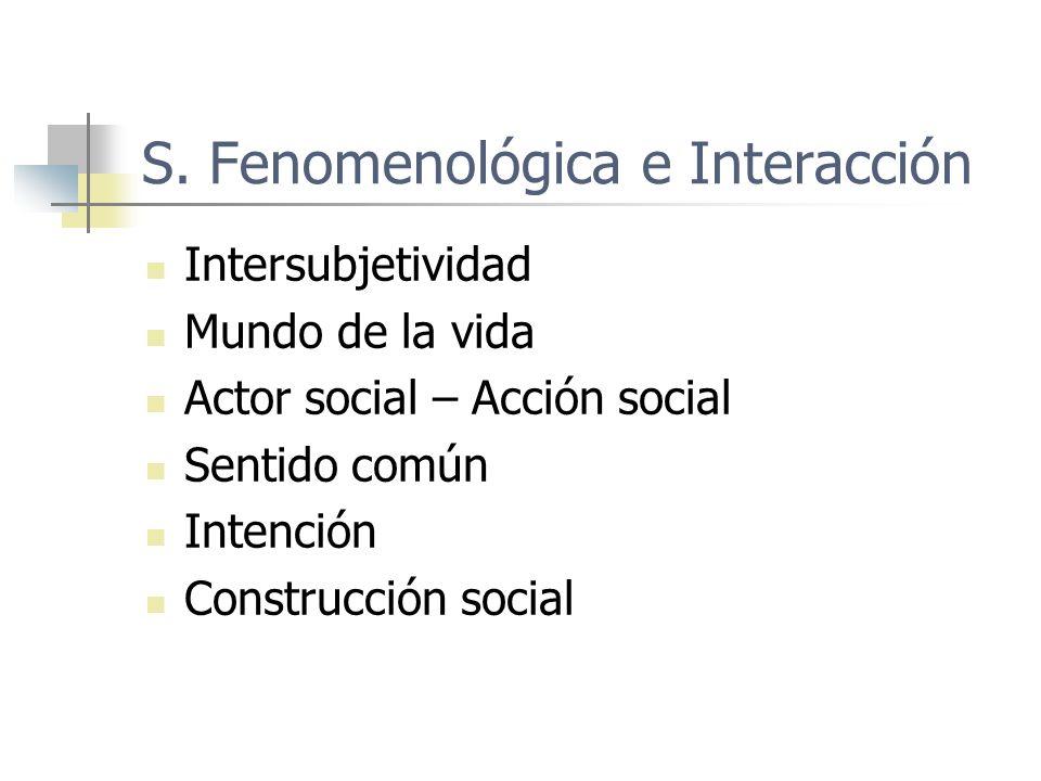 S. Fenomenológica e Interacción