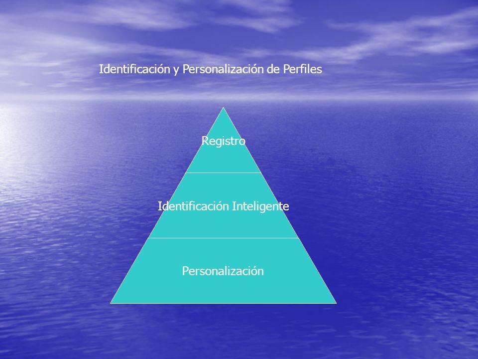 Identificación y Personalización de Perfiles