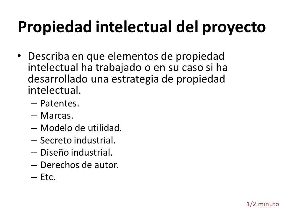 Propiedad intelectual del proyecto