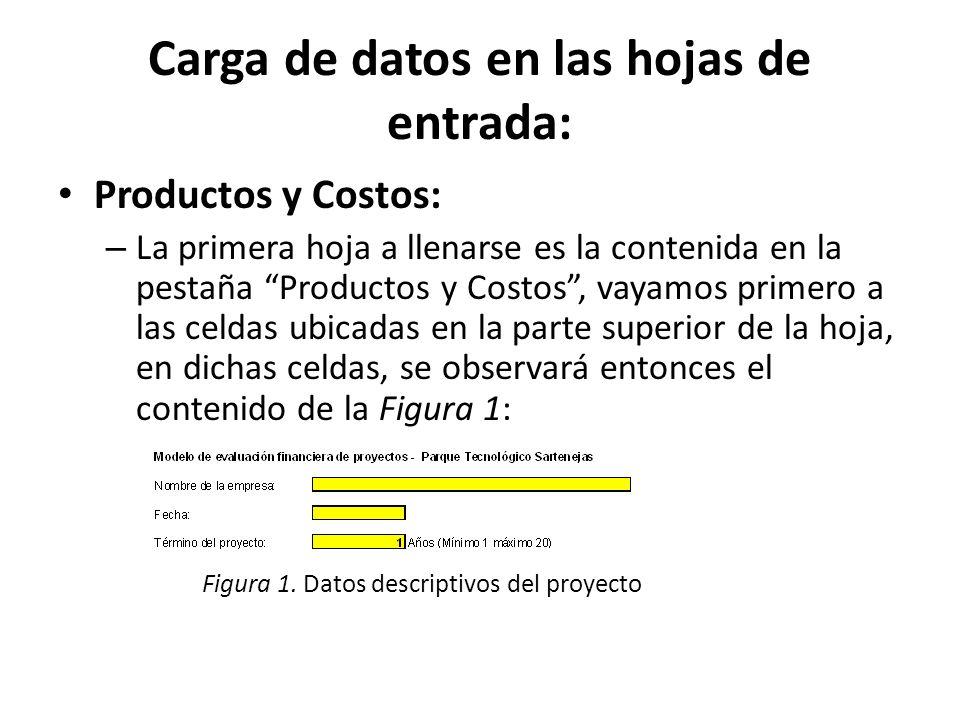 Carga de datos en las hojas de entrada: