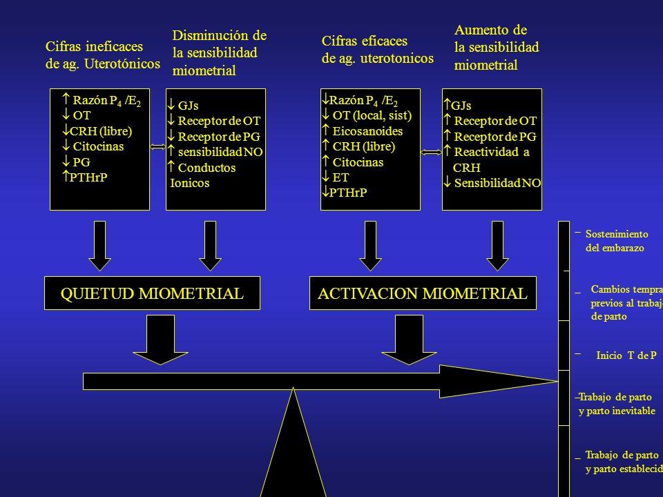 ACTIVACION MIOMETRIAL