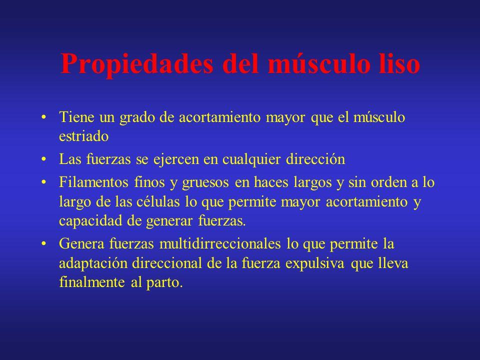 Propiedades del músculo liso