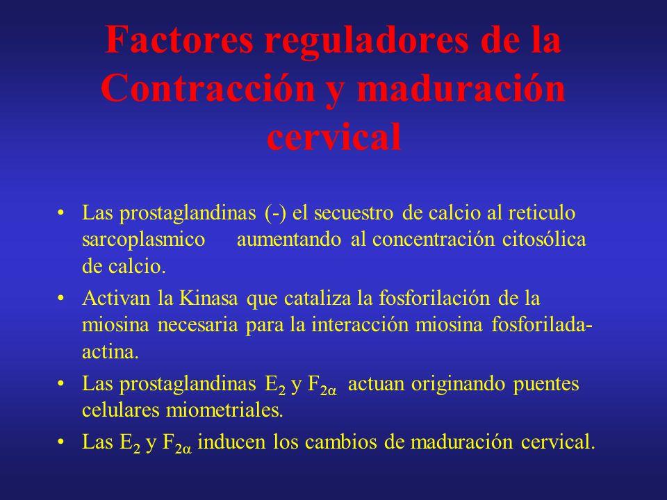 Factores reguladores de la Contracción y maduración cervical