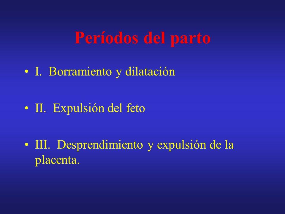 Períodos del parto I. Borramiento y dilatación II. Expulsión del feto