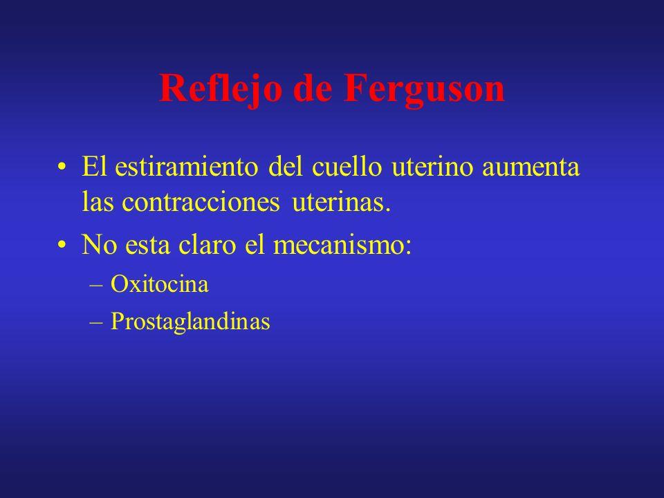 Reflejo de Ferguson El estiramiento del cuello uterino aumenta las contracciones uterinas. No esta claro el mecanismo: