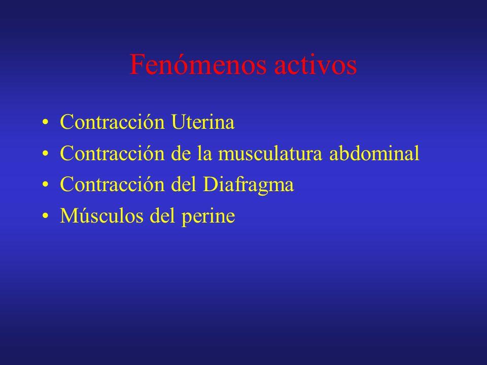 Fenómenos activos Contracción Uterina