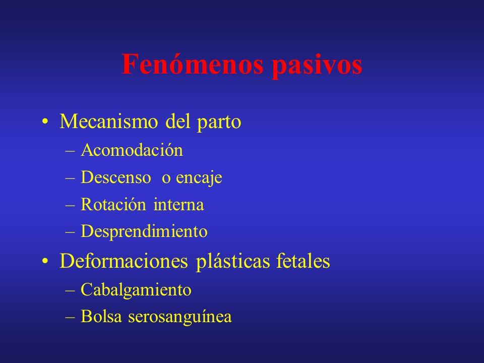 Fenómenos pasivos Mecanismo del parto Deformaciones plásticas fetales