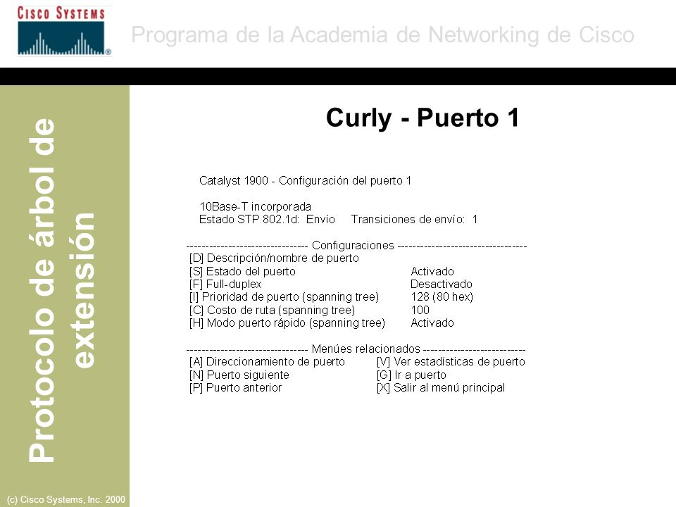 Curly - Puerto 1