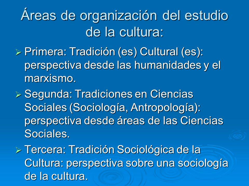 Áreas de organización del estudio de la cultura: