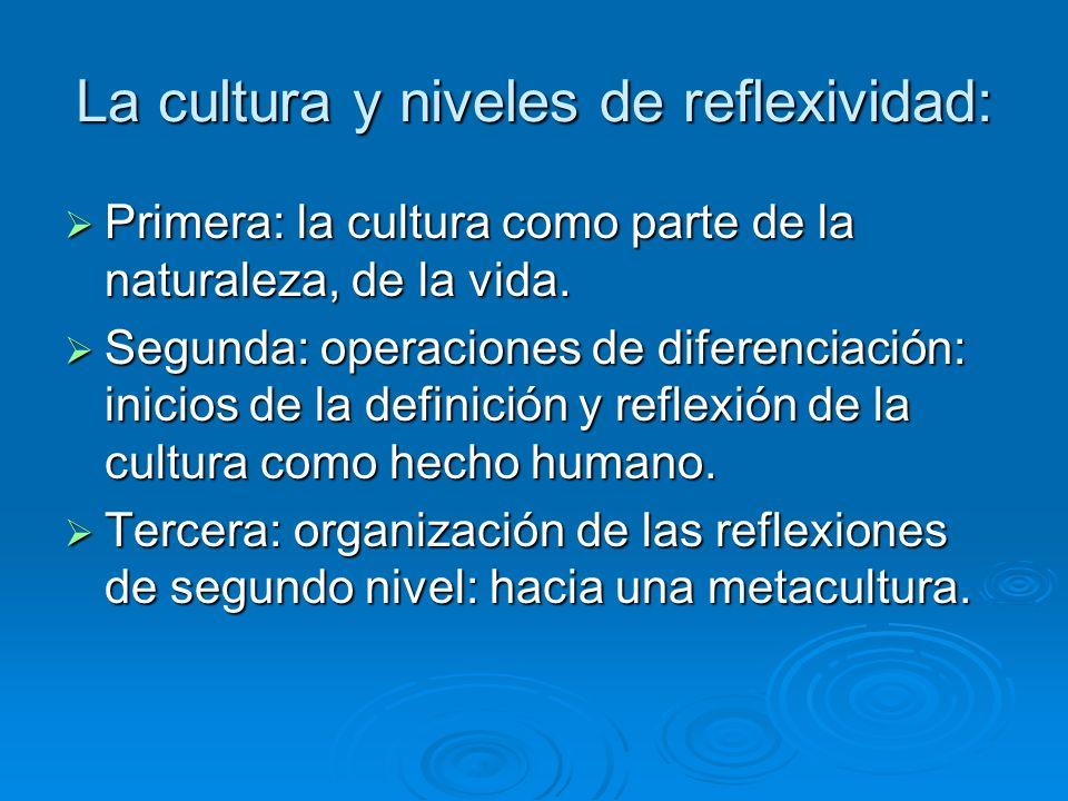 La cultura y niveles de reflexividad: