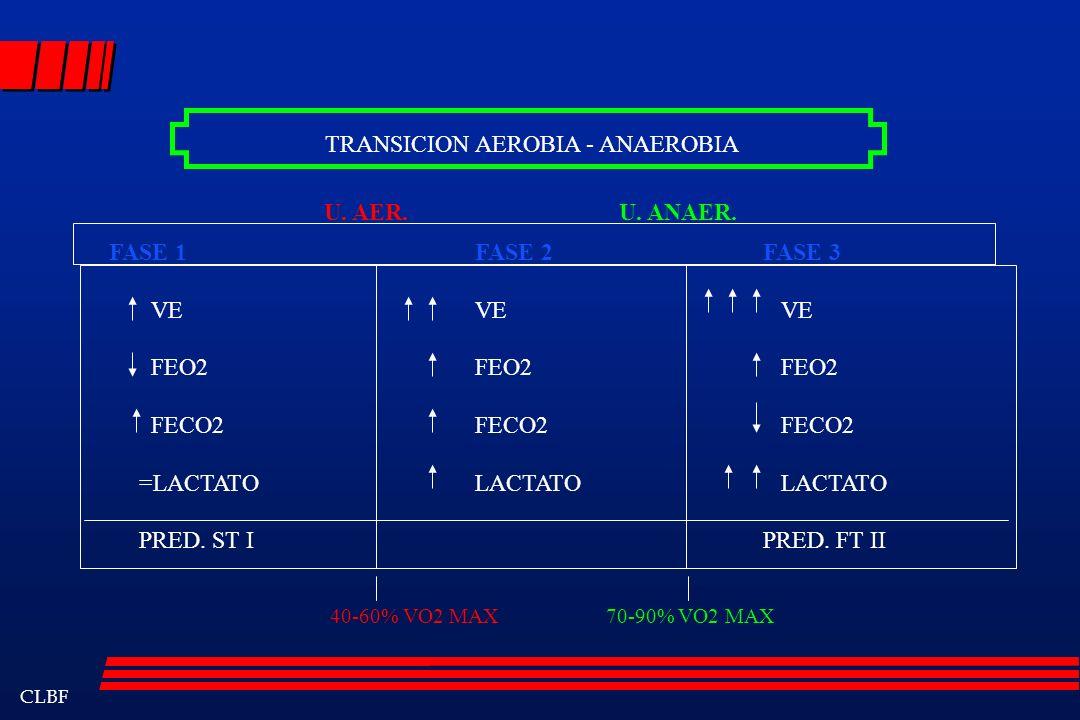 TRANSICION AEROBIA - ANAEROBIA