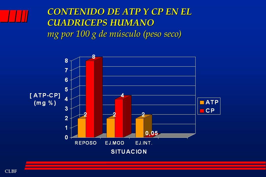 CONTENIDO DE ATP Y CP EN EL CUADRICEPS HUMANO mg por 100 g de músculo (peso seco)