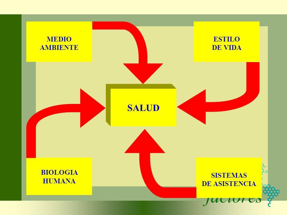 factores SALUD MEDIO AMBIENTE ESTILO DE VIDA BIOLOGIA HUMANA SISTEMAS