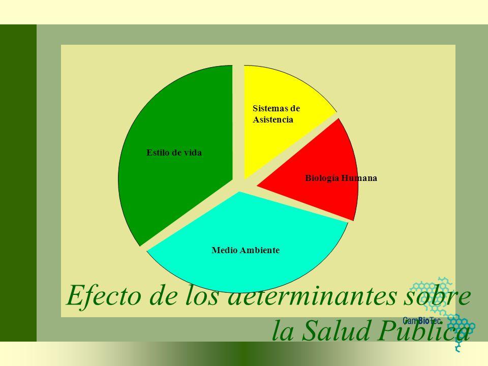 Efecto de los determinantes sobre la Salud Pública
