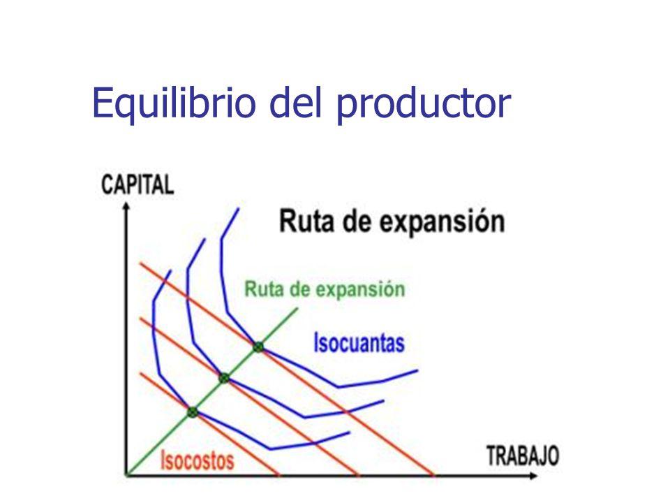 Equilibrio del productor
