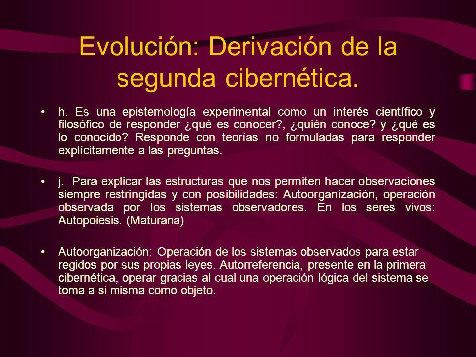 Evolución: Derivación de la segunda cibernética.