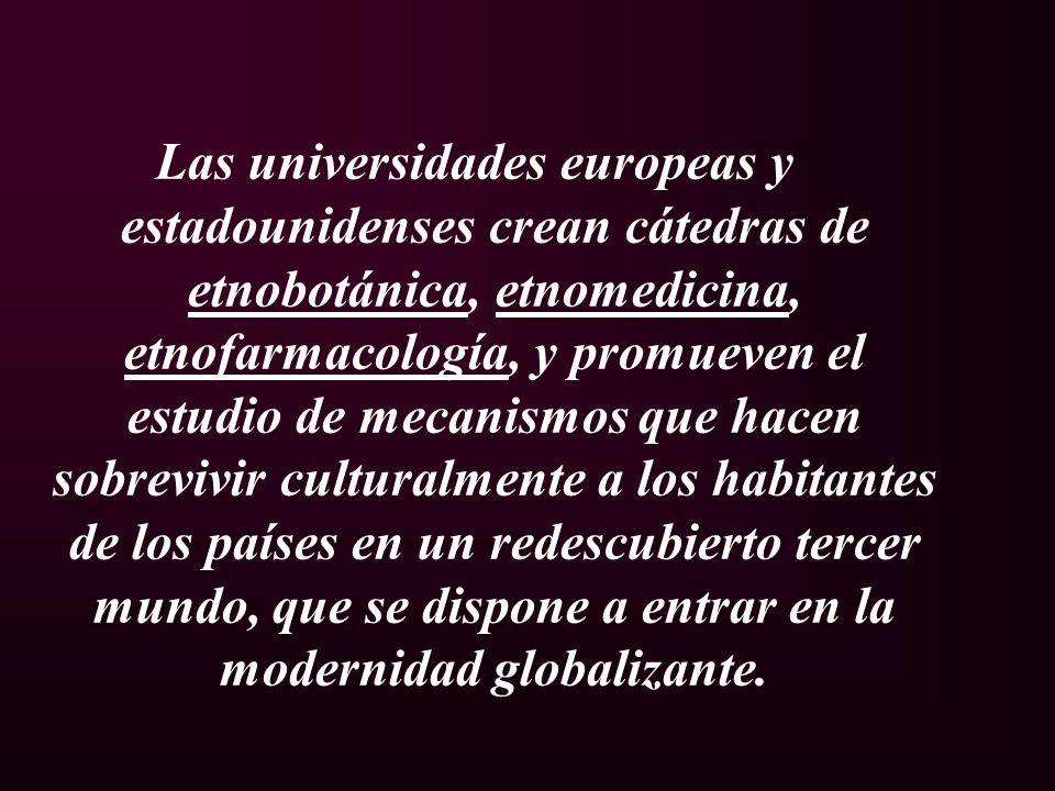 Las universidades europeas y estadounidenses crean cátedras de etnobotánica, etnomedicina, etnofarmacología, y promueven el estudio de mecanismos que hacen sobrevivir culturalmente a los habitantes de los países en un redescubierto tercer mundo, que se dispone a entrar en la modernidad globalizante.