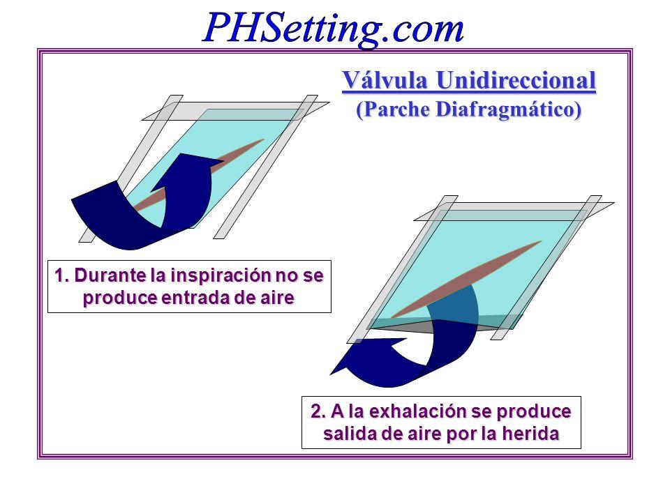 Válvula Unidireccional (Parche Diafragmático)