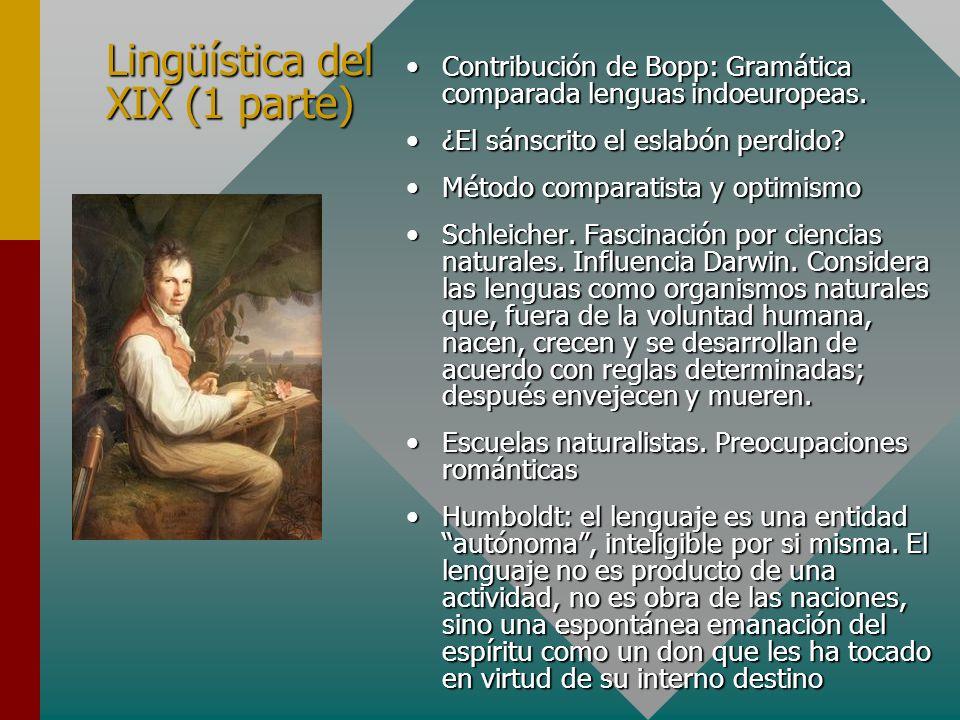 Lingüística del XIX (1 parte)