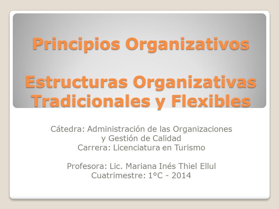 Principios Organizativos Estructuras Organizativas Tradicionales y Flexibles
