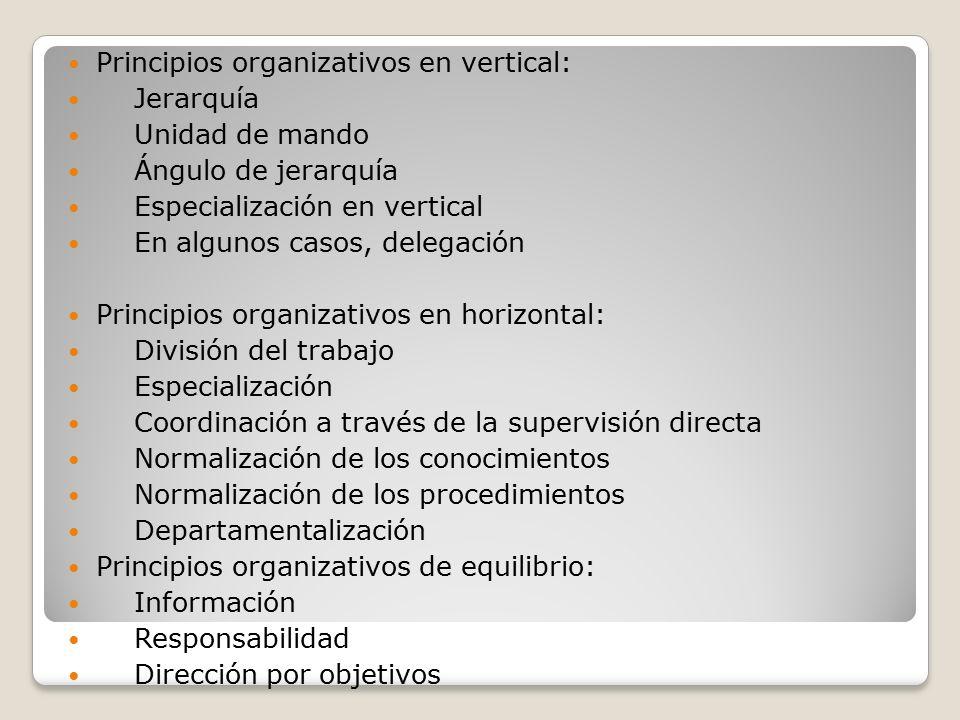 Principios organizativos en vertical: