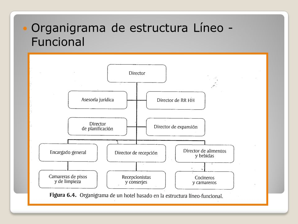 Organigrama de estructura Líneo - Funcional
