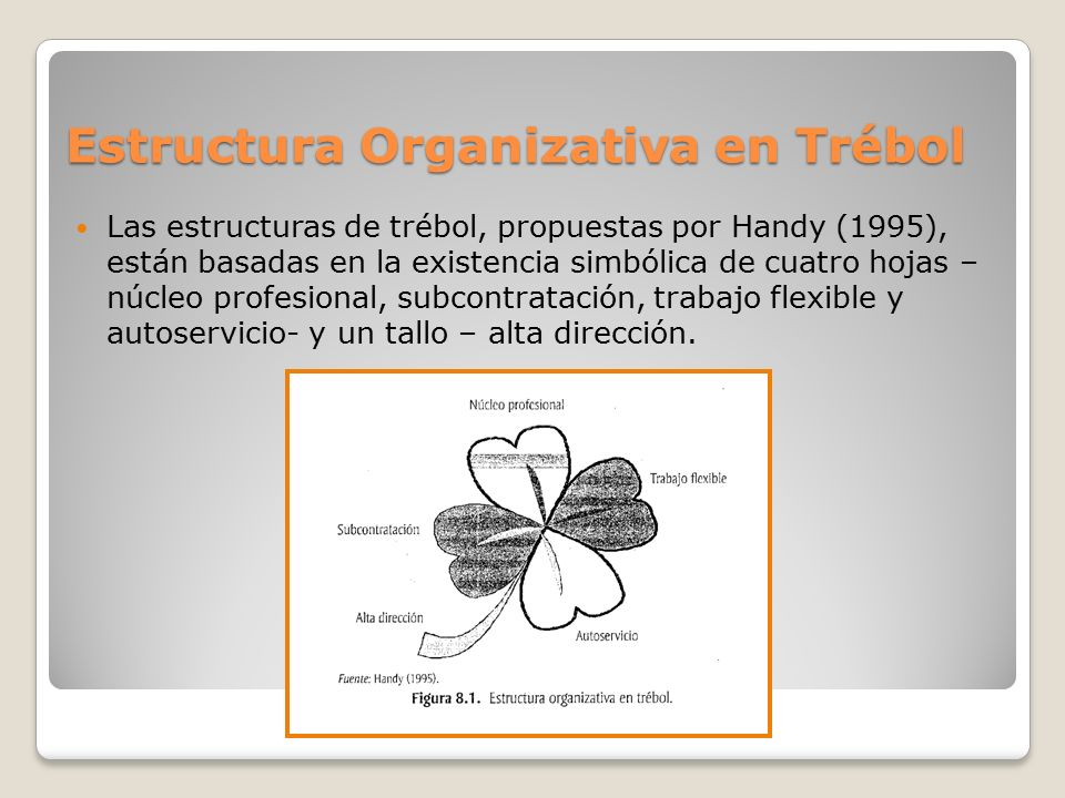 Estructura Organizativa en Trébol