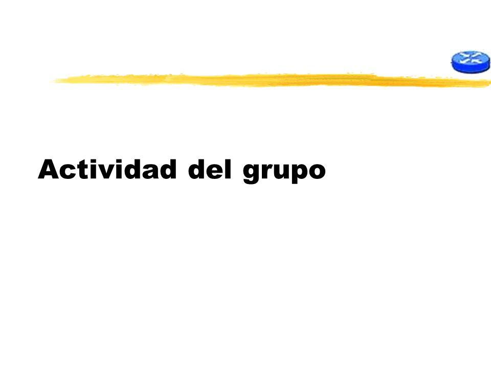 Actividad del grupo